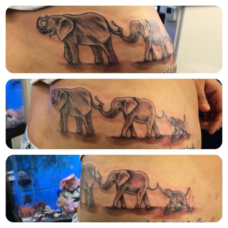 40 best family trunk tattoos images on pinterest family for Elephant tattoo meaning family