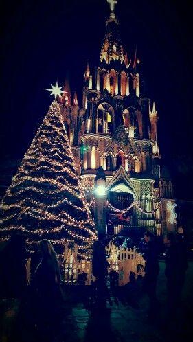 Los últimos suspiros de las fiestas decembrinas, el árbol esperando solo  la llegada de los reyes magos