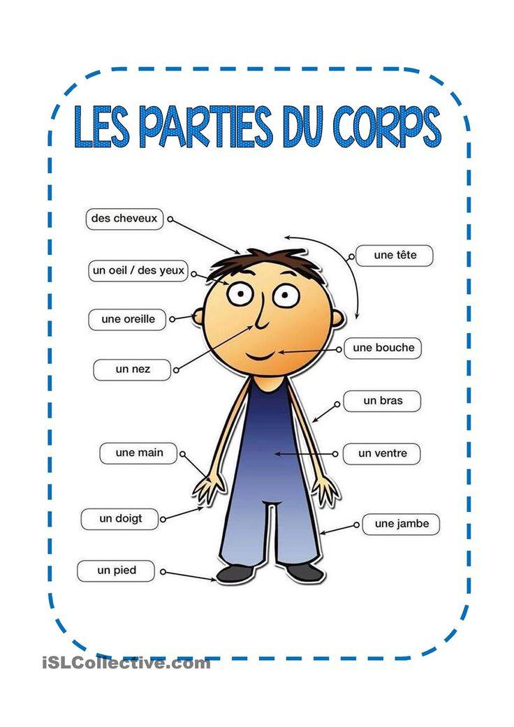 LES PARTIES DU CORPS   GRATUIT FLE fiches pédagogiques