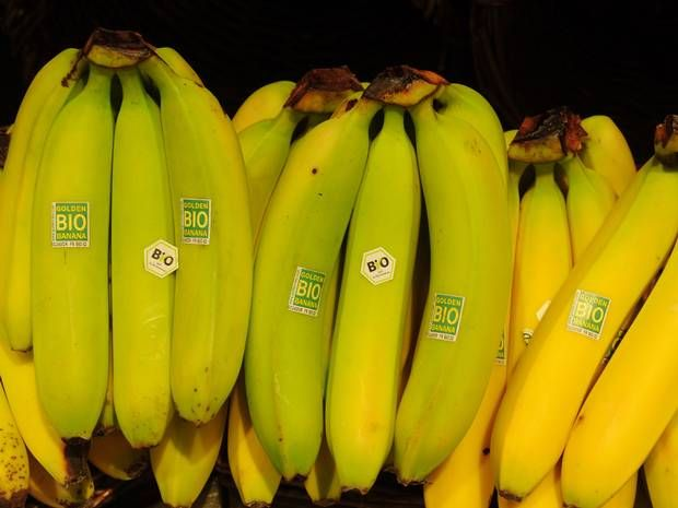 GM banana designed to slash African infant mortality enters human trials - Science - News - The Independent