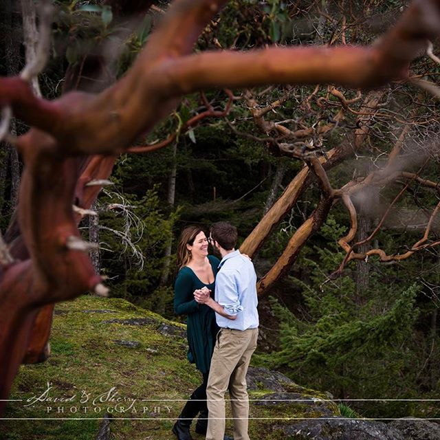 Love under the arbutus trees. We hiked down to the Pacific Ocean at #lighthousepark in Vancouver to capture these two under their favourite trees. Hiking and #engagement photos go so well together, finding unique locations is just part of the fun which makes our job fun.