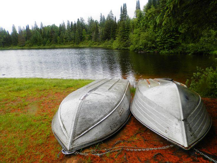 Algonquin Park Rain Lake - ExploreOntario.net