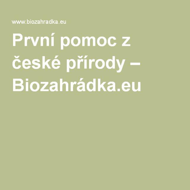 První pomoc z české přírody – Biozahrádka.eu