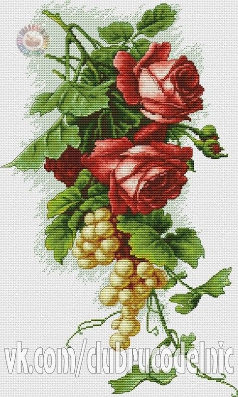 Rose and Grape