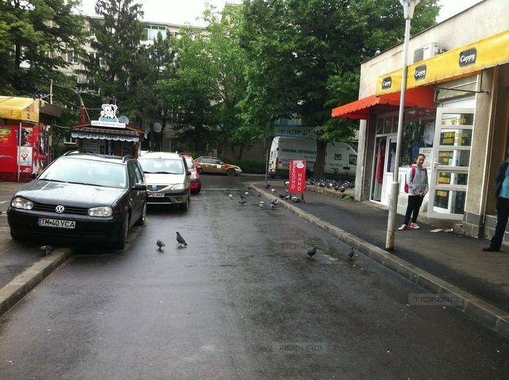 Lucrari inaugurate pe ploaie in zona Pietei Dacia. Refacerea pietei mai asteapta!