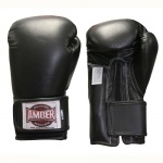 Boxing Aerobics Gloves - $39.00