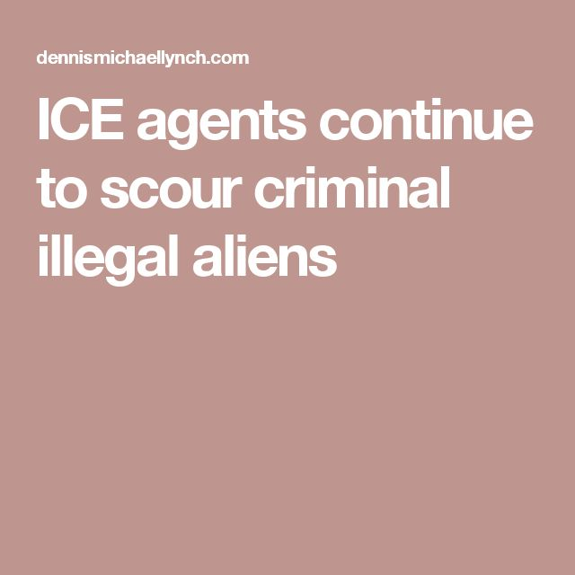 ICE agents continue to scour criminal illegal aliens