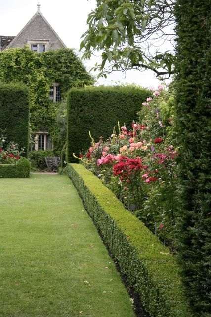 "Box hedging and borders provide visual interest and integration with our ""mock tudor house"""