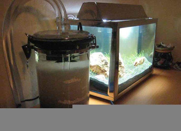 1000 images about acquarium projects on pinterest for Acrylic fish tank diy