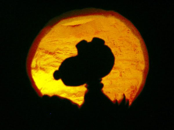 Love this idea. It's the great pumpkin Charlie Brown