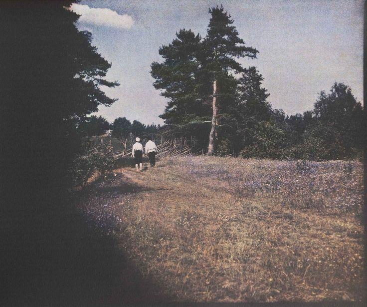 Через поля. Финляндия