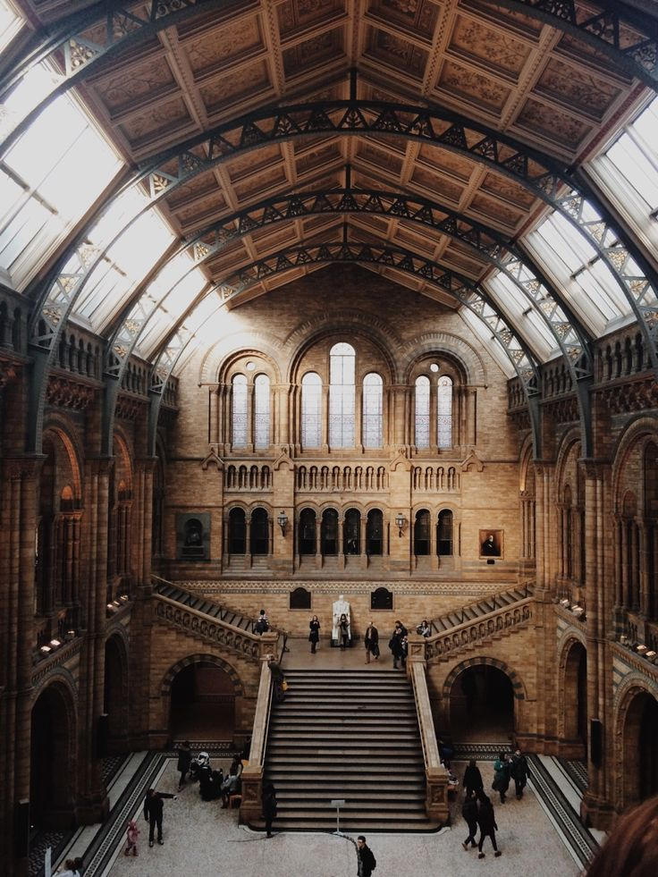 The Grand Central Hall at the Natural History Museum,  London, U.K. by dave porter peterborough.