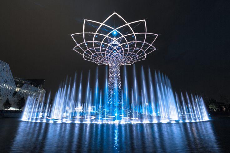 EXPO Milano Tree of Life #TuscanyAgriturismoGiratola