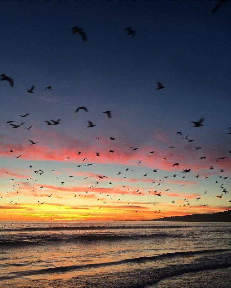Charm Bracelet - Sunset on Horizon by VIDA VIDA 5j1zqcq