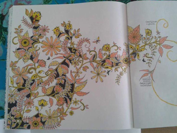 Secret Gardens Coloring Books Enchanted Garden Livros Paint Vintage Pages