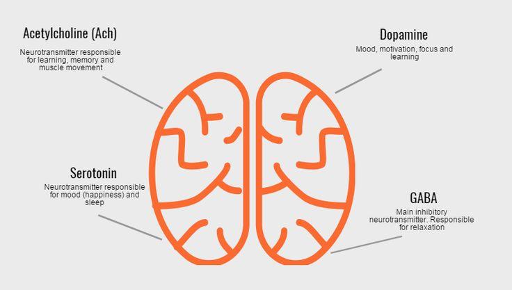 Neurotransmitter definition