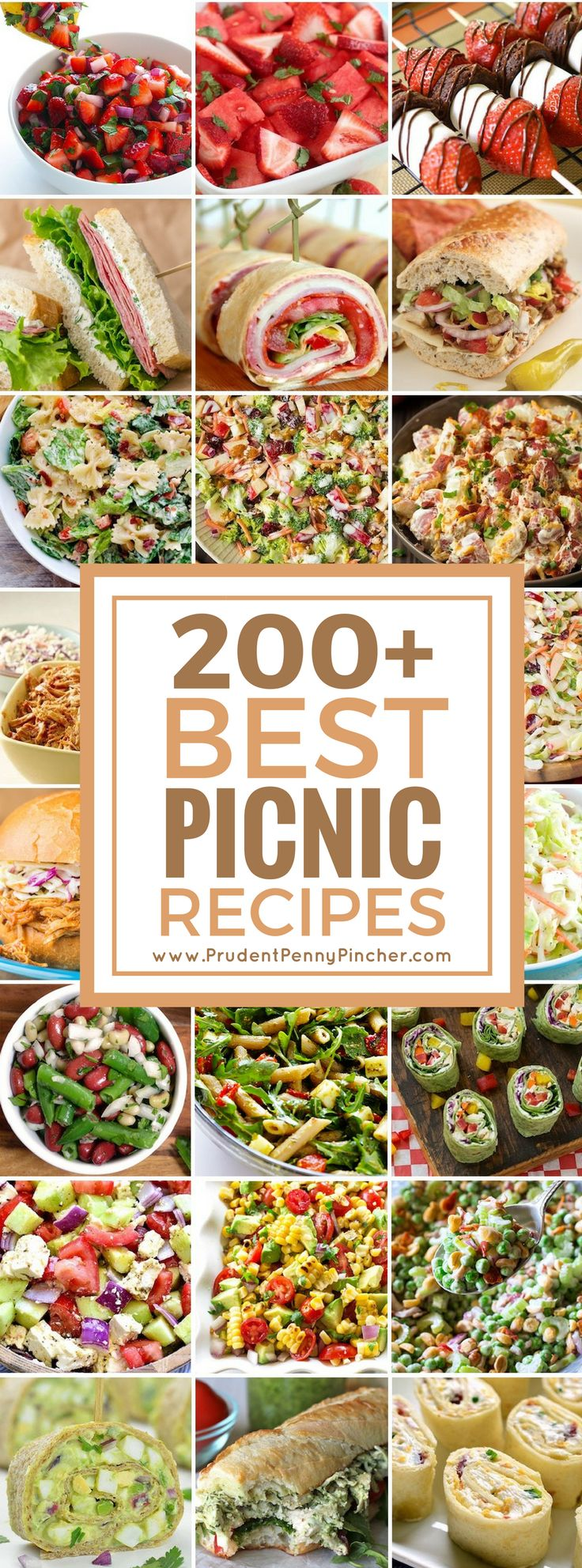 200 Best Picnic Recipes  Be featured in Model Citizen App, Magazine and Blog.  www.modelcitizenapp.com