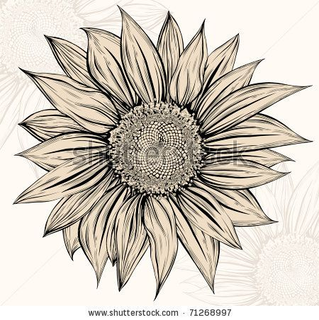 sunflower drawing - Google Search for my elbow if I decide to finish my sleeve