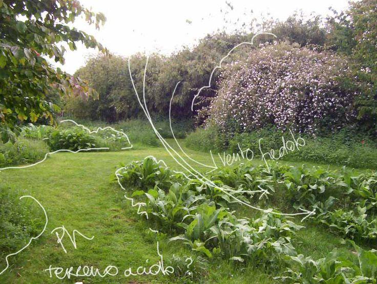 oltre 25 fantastiche idee su progettare il giardino su pinterest ... - Organizzare Un Giardino Piccolo