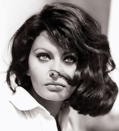 Sophia Loren...stunning was invented to describe her.