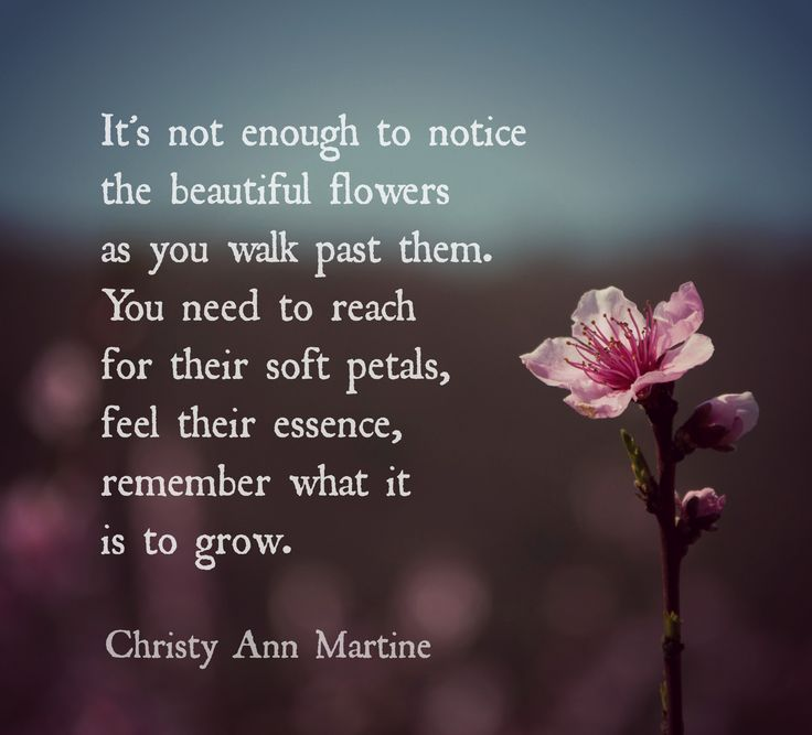 Short Quotes About Nature: 425 Best Poems I've Written Images On Pinterest