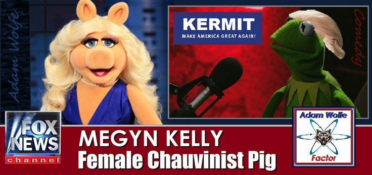 Meagan Kelly Is A P.O.S.!
