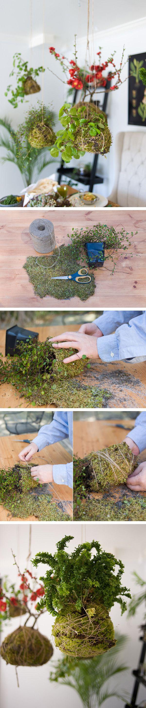 jardin-colgante-kokedama--diy-muy-ingenioso-1