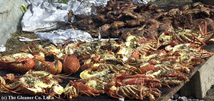 Tasty Foods, Picture provided by the Jamaican Gleaner