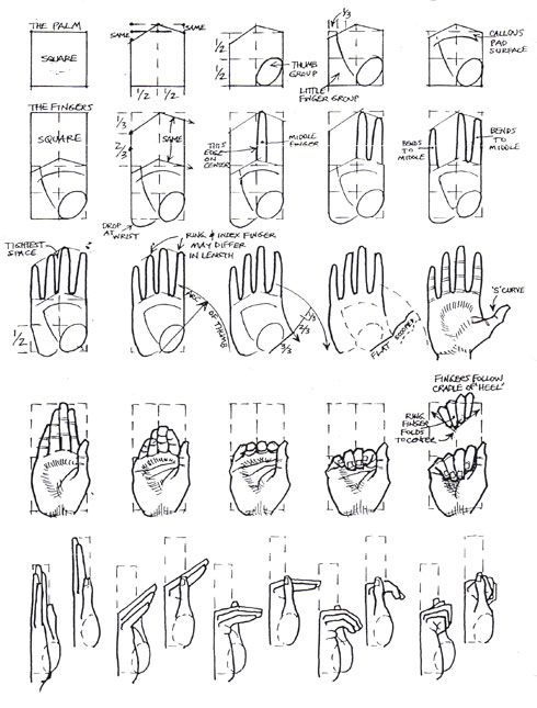 hand tutorial ✤ || CHARACTER DESIGN REFERENCES | キャラクターデザイン | çizgi film • Find more at https://www.facebook.com/CharacterDesignReferences & http://www.pinterest.com/characterdesigh