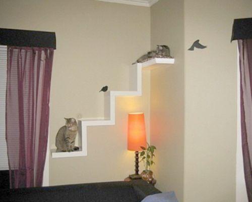 Estanterias para gatos DIY V