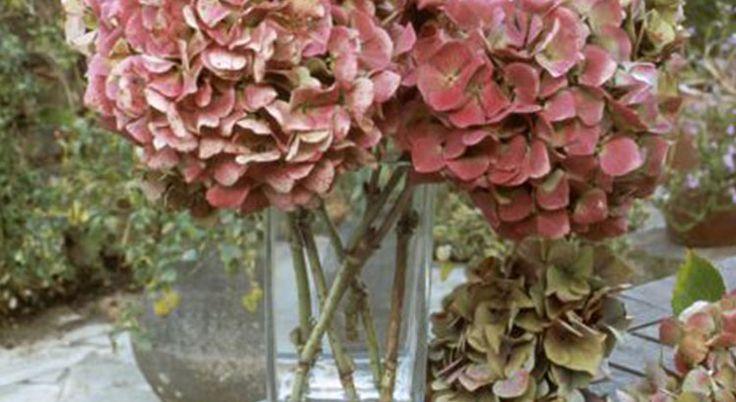 les 74 meilleures images du tableau au jardin sur pinterest jardinage bricolage et decoration. Black Bedroom Furniture Sets. Home Design Ideas