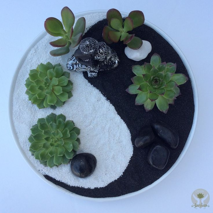 868 best mini gardens images on pinterest succulents for Jardin zen miniature