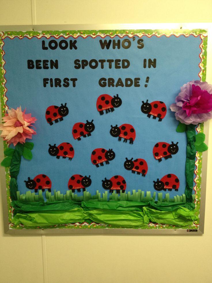 ... Board Ideas, Preschool Bulletin Board Ideas, Bulletin Boards, Ladybugs