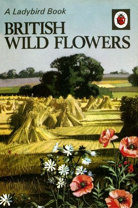 """British Wild Flowers cover (from vintage English """"Ladybird"""" storybooks)"""