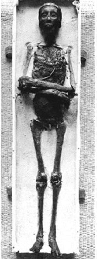 Тутанхамон неплохо сохранился, чтобы вернуться из царства мертвых
