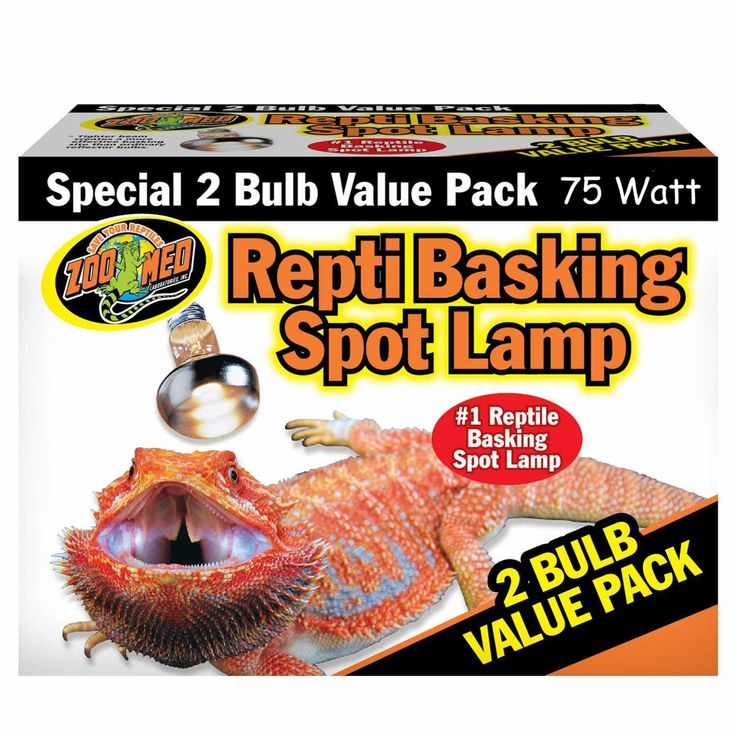 Get your favorite bearded lizard the perfect heat source for him(or her) to bask in specially designed for bearded dragons and super effective. http://ipetsnet.com/home/bearded-dragon-heat-lamp/