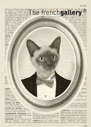 Cat Portrait in Tuxedo Print  - mister cat in suit portrait collage 8x10 french dictionary book - cat poster - Art Print. $12.00, via Etsy.