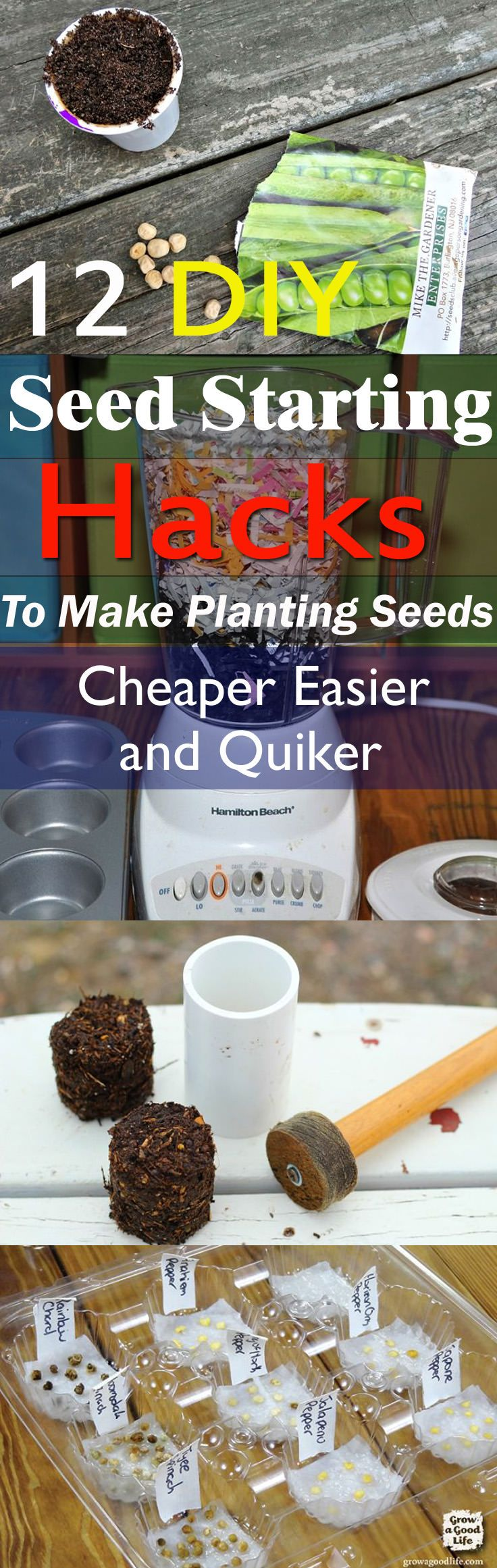 These seed starting hacks and DIYs can save your money and make growing plants from seeds a lot easier. Check out!