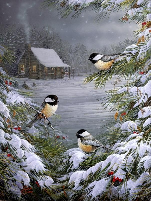 winter scape with birds