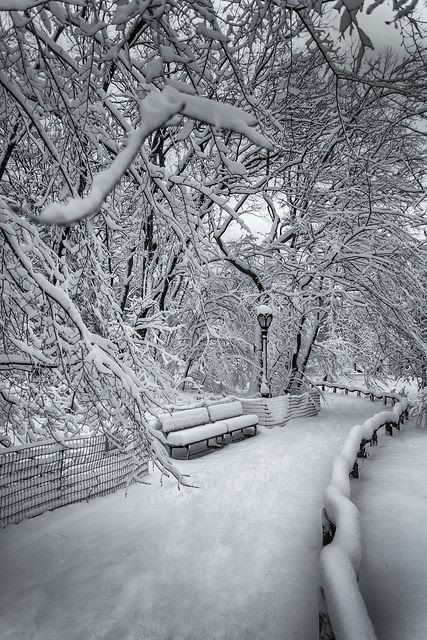 Central Park covered by snow, New York City