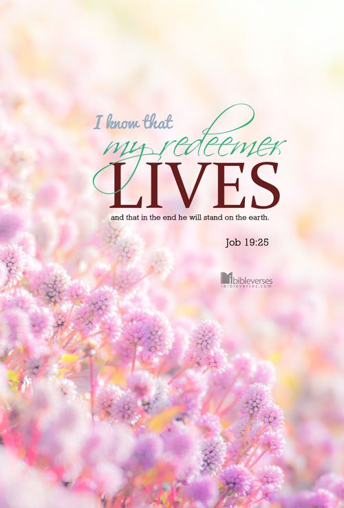 I know that my redeemer lives, and that in the end he will stand on the earth. -Job 19:25...http://ibibleverses.christianpost.com/?p=79177  #Job #redeemer #lives