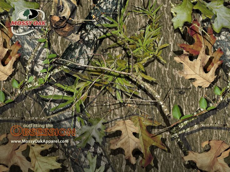 Mossy Oak is owned and operated under its parent company Haas Outdoors, Inc…