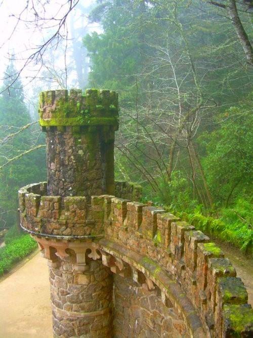 Ireland castle ruins looks like an abandoned fairy tale...