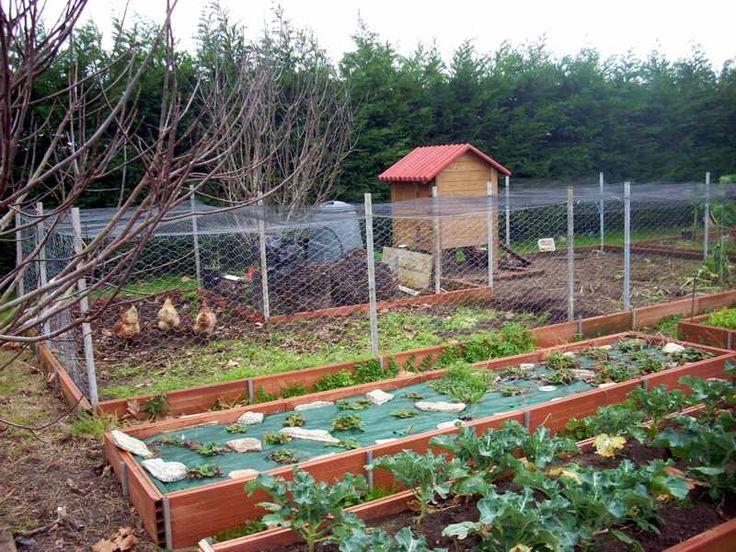 Foto de El gallinero encontrada en www.atooms.com