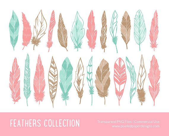 "Feather clip art: ""FEATHER DIGITAL CLIPART"" Digital clipart for scrapbooking, card, invites.  Multiple colors, pink purple blue yellow."