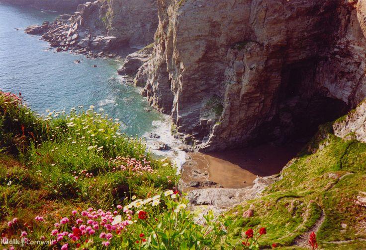 Cliffs above Hole Beach near Trebarwith Strand, Cornwall