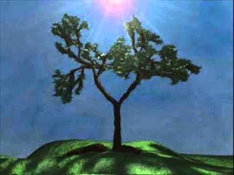 Reflexão 49 - A arvore dos problemas (Narrado)