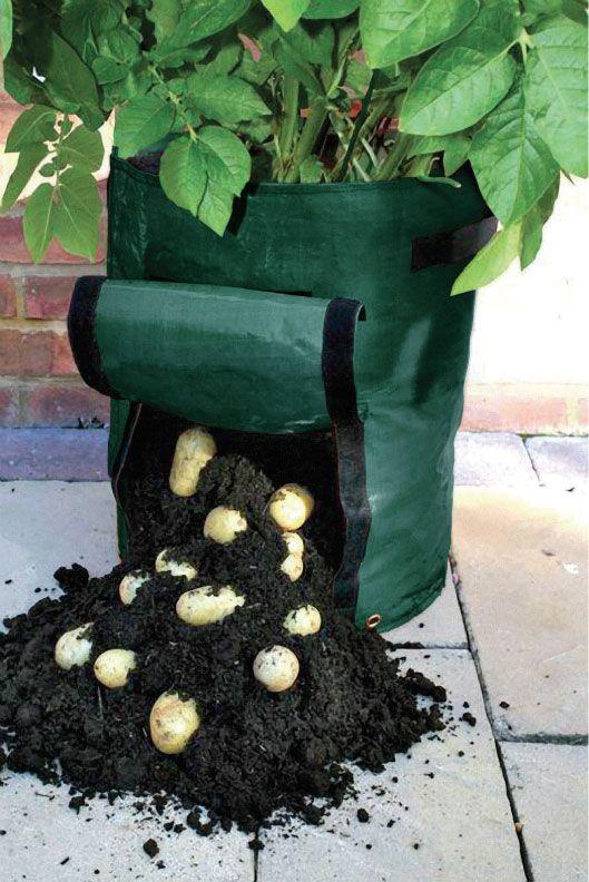 93 best gardening tools images on pinterest gardening for Vegetable garden tools