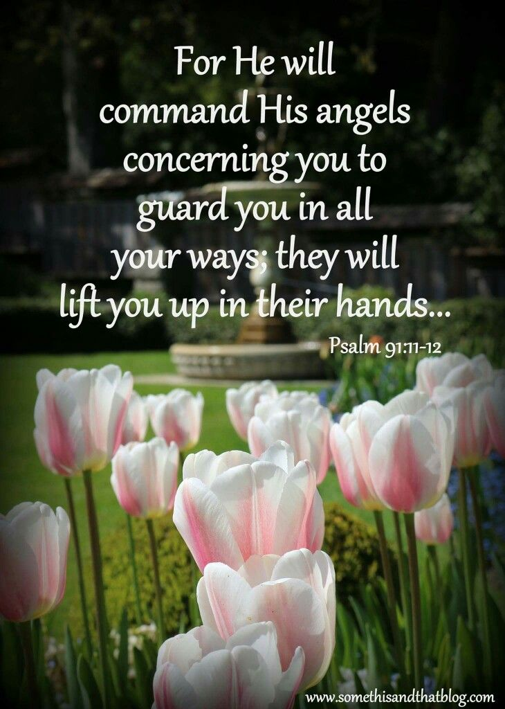 For He will command His angels concerning you to guard you in all your ways; they will lift you up in their hands... Psalm 91:11-12  www.somethisandthatblog.com