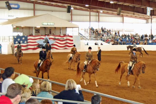 Get the schedule, ticket info, and details about the 2016 Scottsdale Arabian Horse Show. Held at WestWorld in Scottsdale. It's a one-of-a-kind show!